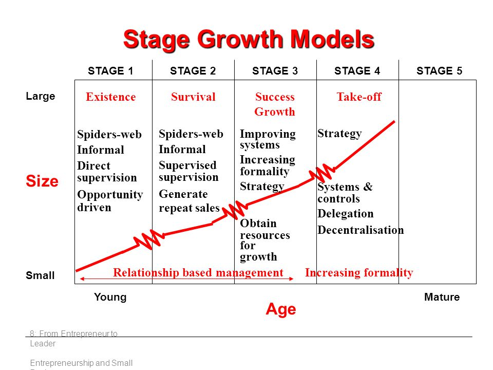 8: From Entrepreneur to Leader Entrepreneurship and Small Business Stage Growth Models Large Small Young Age Mature STAGE 1STAGE 2STAGE 3STAGE 4STAGE 5 ExistenceSurvivalSuccess Growth Spiders-web Informal Direct supervision Opportunity driven Spiders-web Informal Supervised supervision Generate repeat sales Improving systems Increasing formality Strategy Obtain resources for growth Take-off Strategy Systems & controls Delegation Decentralisation Increasing formalityRelationship based management Size