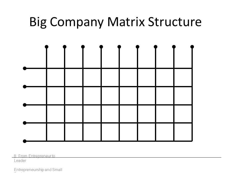 Big Company Matrix Structure 8: From Entrepreneur to Leader Entrepreneurship and Small Business