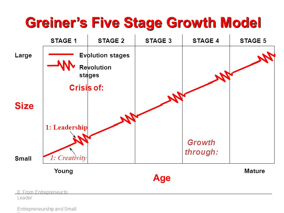 8: From Entrepreneur to Leader Entrepreneurship and Small Business Size Large Small Young Age Mature STAGE 1STAGE 2STAGE 3STAGE 4STAGE 5 Crisis of: 1: Leadership 1: Creativity Evolution stages Revolution stages Greiner's Five Stage Growth Model Growth through: