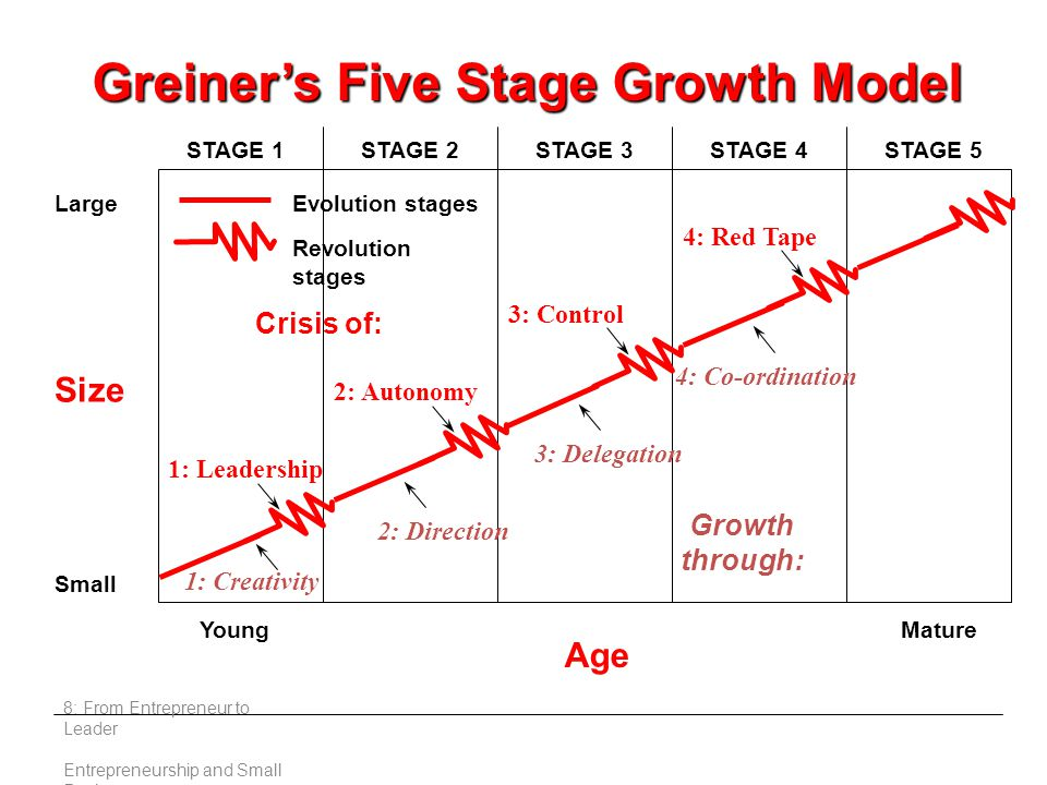 8: From Entrepreneur to Leader Entrepreneurship and Small Business Crisis of: Growth through: Size Large Small Young Age Mature STAGE 1STAGE 2STAGE 3STAGE 4STAGE 5 1: Leadership 2: Autonomy 3: Control 4: Red Tape 1: Creativity 2: Direction 3: Delegation 4: Co-ordination Evolution stages Revolution stages Greiner's Five Stage Growth Model