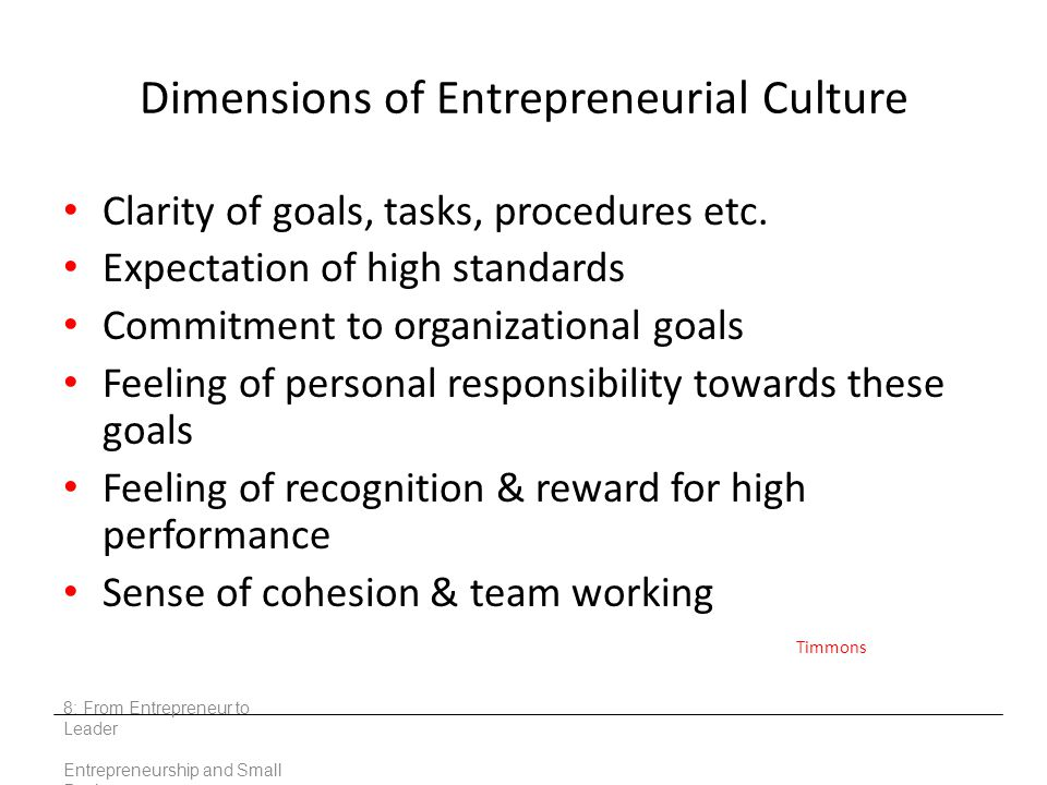 Dimensions of Entrepreneurial Culture Clarity of goals, tasks, procedures etc. Expectation of high standards Commitment to organizational goals Feelin