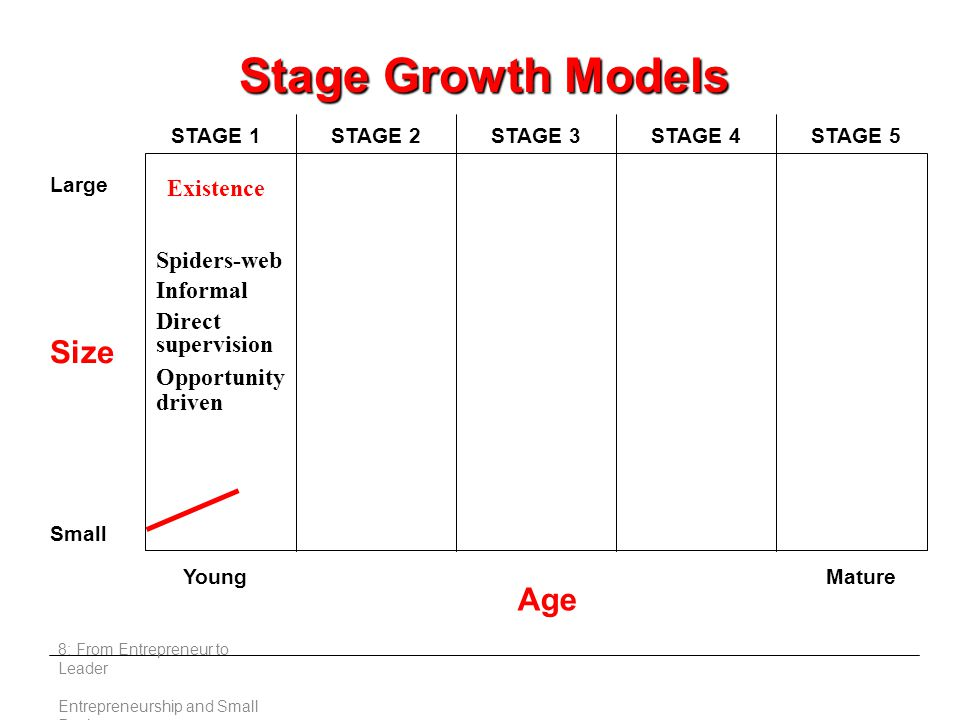 8: From Entrepreneur to Leader Entrepreneurship and Small Business Existence Size Large Small Young Age Mature STAGE 1STAGE 2STAGE 3STAGE 4STAGE 5 Spiders-web Informal Direct supervision Opportunity driven Stage Growth Models