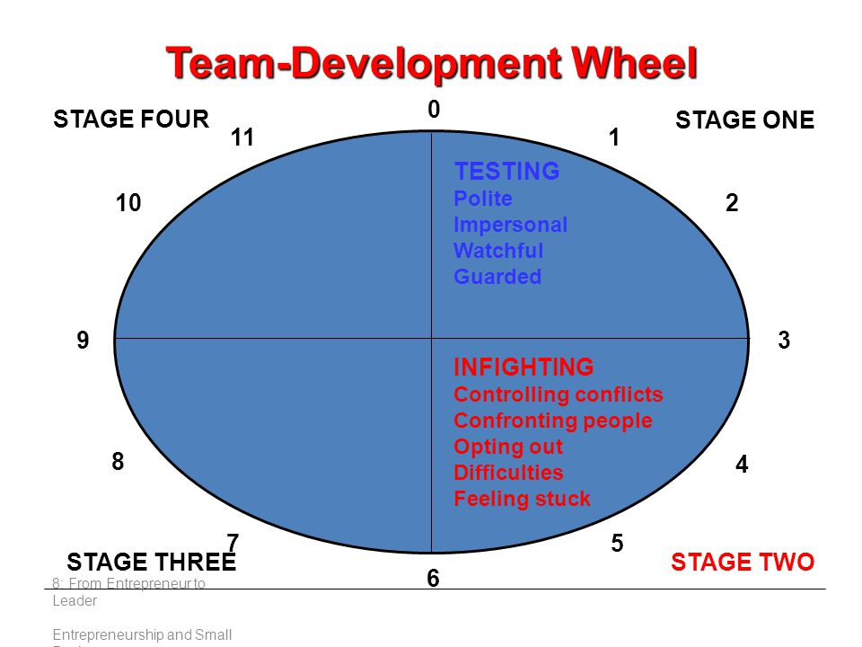 8: From Entrepreneur to Leader Entrepreneurship and Small Business STAGE FOUR STAGE THREESTAGE TWO STAGE ONE 0 TESTING Polite Impersonal Watchful Guarded INFIGHTING Controlling conflicts Confronting people Opting out Difficulties Feeling stuck 39 6 4 5 8 7 2 111 10 Team-Development Wheel