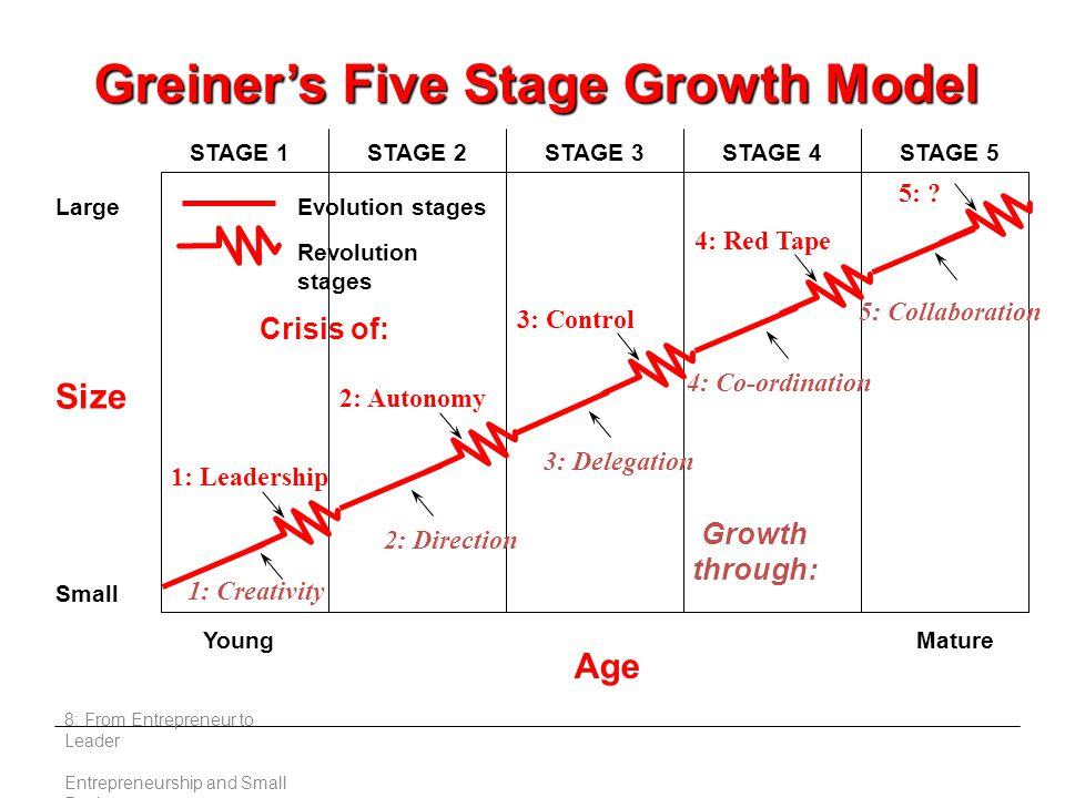 Growth through: Size Large Small Young Age Mature STAGE 1STAGE 2STAGE 3STAGE 4STAGE 5 Crisis of: 1: Leadership 2: Autonomy 3: Control 4: Red Tape 5: .