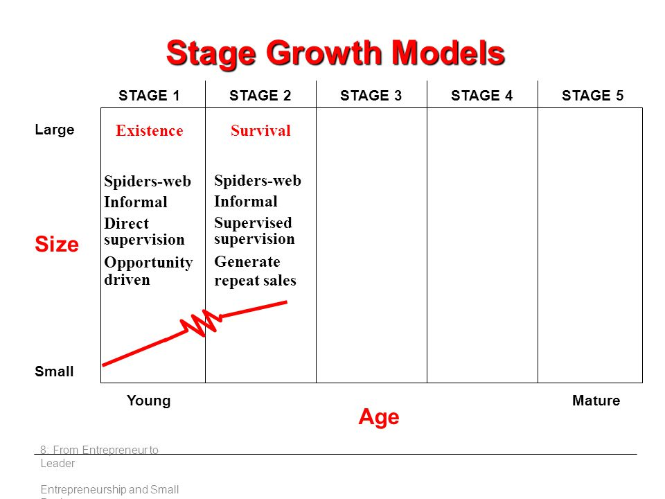 Large Small Young Age Mature STAGE 1STAGE 2STAGE 3STAGE 4STAGE 5 ExistenceSurvival Spiders-web Informal Direct supervision Opportunity driven Spiders-web Informal Supervised supervision Generate repeat sales Stage Growth Models Size