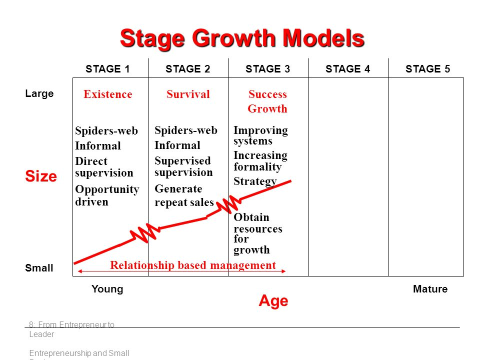 8: From Entrepreneur to Leader Entrepreneurship and Small Business Stage Growth Models Large Small Young Age Mature STAGE 1STAGE 2STAGE 3STAGE 4STAGE 5 ExistenceSurvivalSuccess Growth Spiders-web Informal Direct supervision Opportunity driven Spiders-web Informal Supervised supervision Generate repeat sales Improving systems Increasing formality Strategy Obtain resources for growth Relationship based management Size