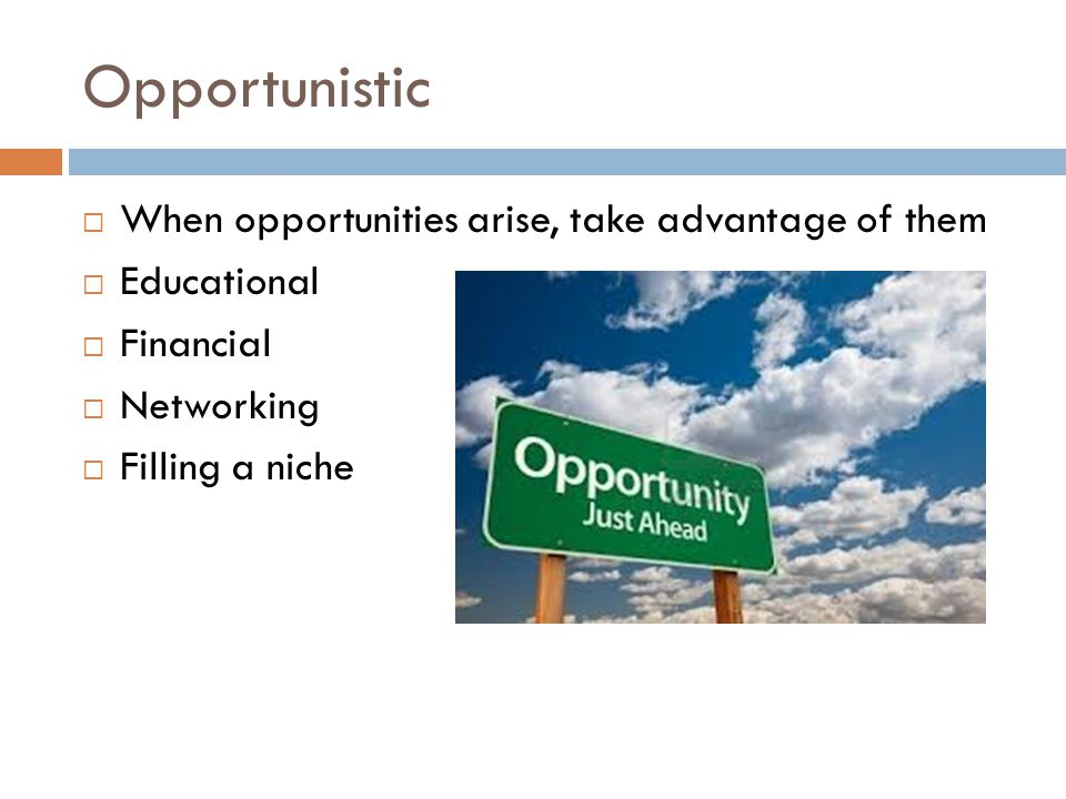 Opportunistic  When opportunities arise, take advantage of them  Educational  Financial  Networking  Filling a niche