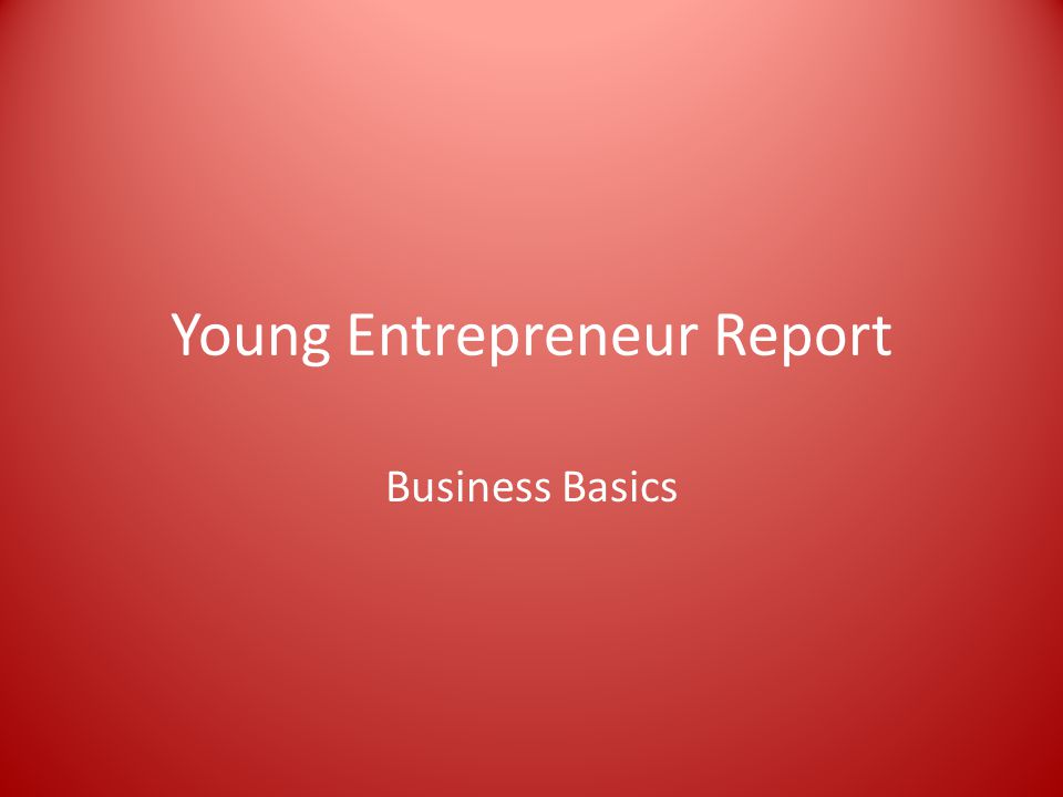 Young Entrepreneur Report Business Basics