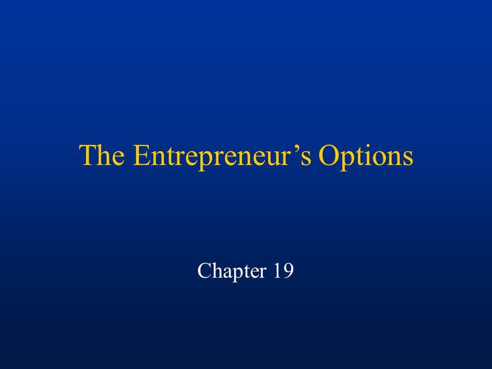 The Entrepreneur's Options Chapter 19