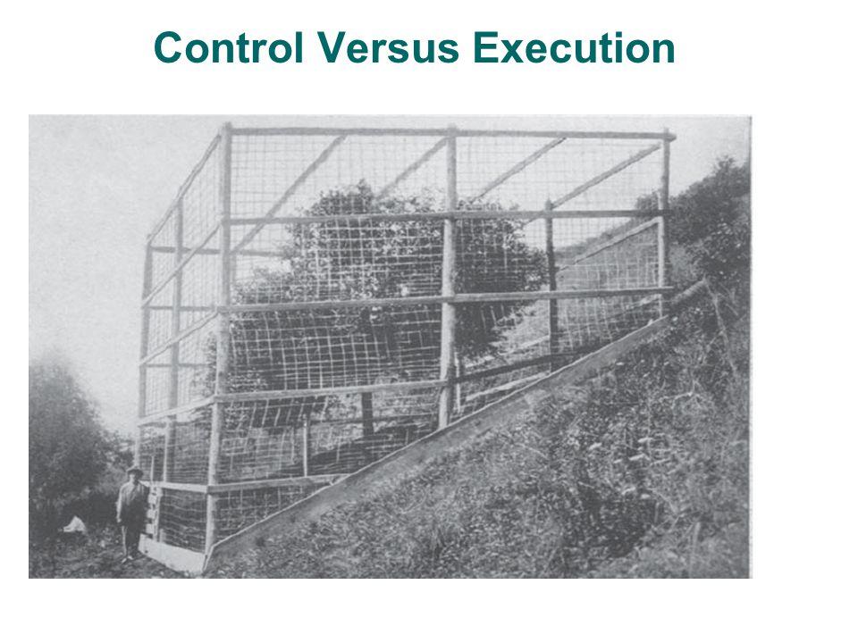Control Versus Execution