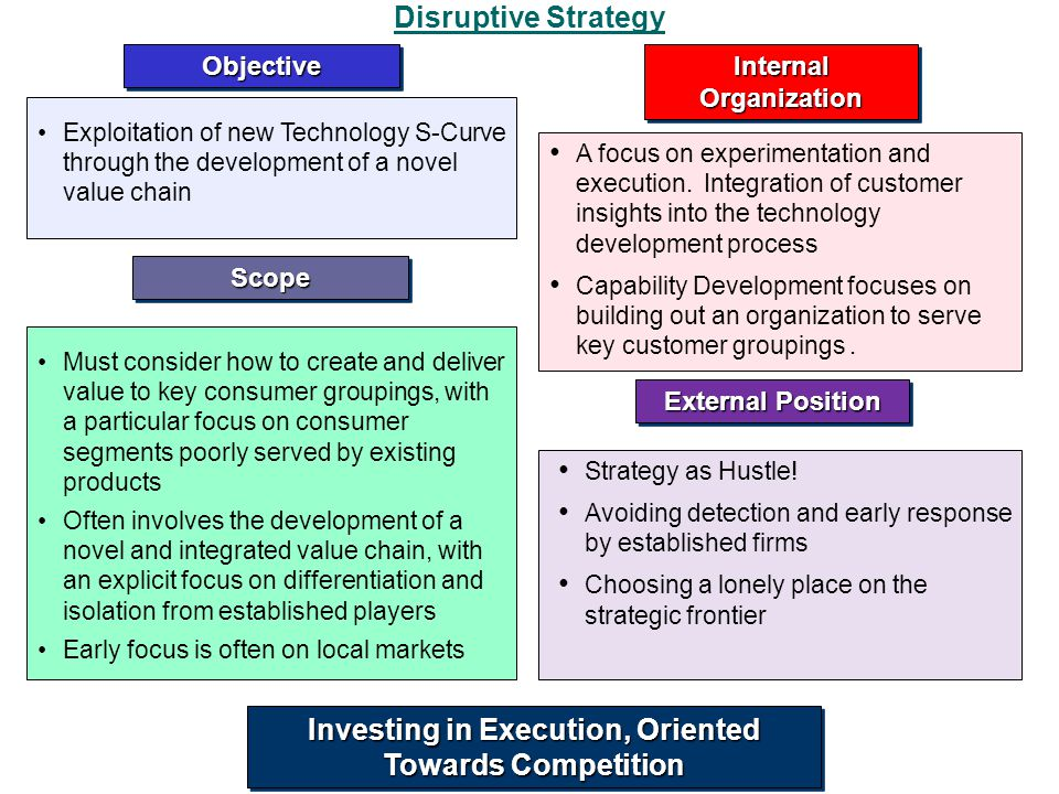 Disruptive Strategy Internal Organization A focus on experimentation and execution. Integration of customer insights into the technology development p