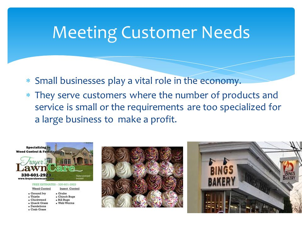  Small businesses play a vital role in the economy.  They serve customers where the number of products and service is small or the requirements are