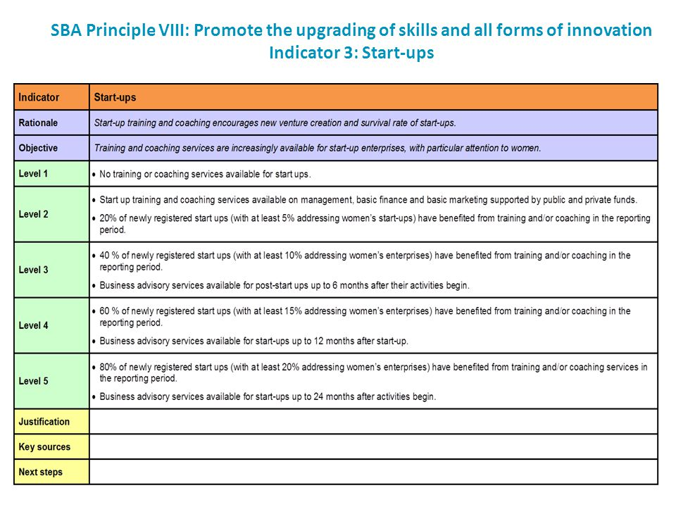 SBA Principle VIII: Promote the upgrading of skills and all forms of innovation Indicator 3: Start-ups