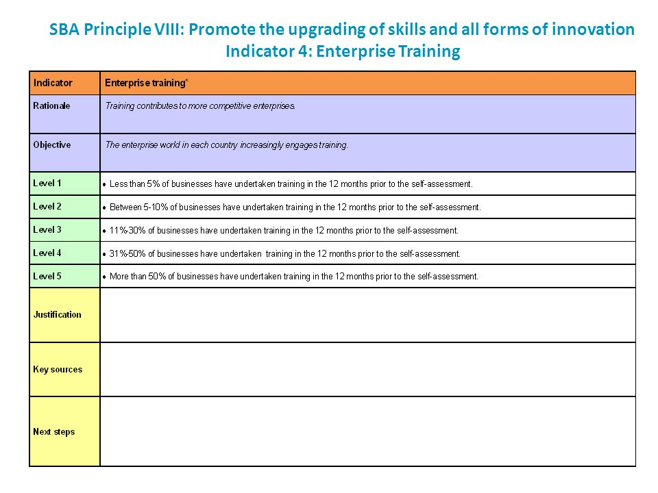 SBA Principle VIII: Promote the upgrading of skills and all forms of innovation Indicator 4: Enterprise Training