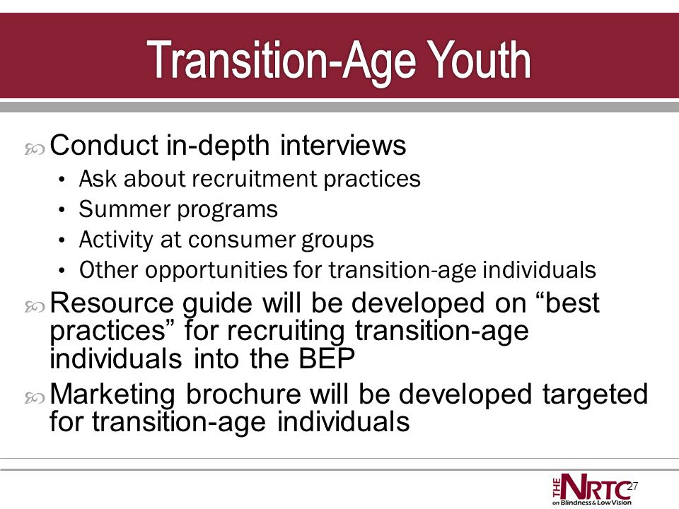 27  Conduct in-depth interviews Ask about recruitment practices Summer programs Activity at consumer groups Other opportunities for transition-age in