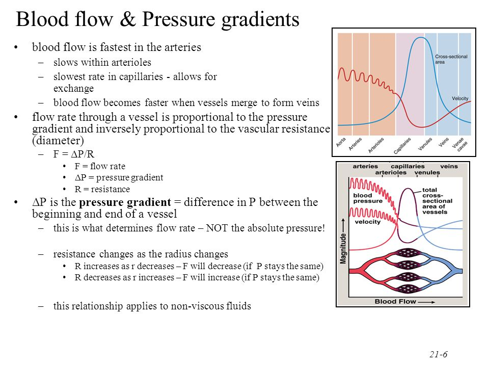 21-7 Blood flow & Pressure gradients frictional losses (resistance) causes a drop in P as the blood travels through a section of vessel –caused by friction between the moving fluid and the stationary wall –if pressure gradient is unchanged – then increasing R will inhibit blood flow and decrease F –R depends on three factors 1.