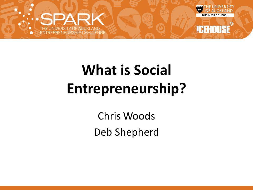 What is Social Entrepreneurship Chris Woods Deb Shepherd