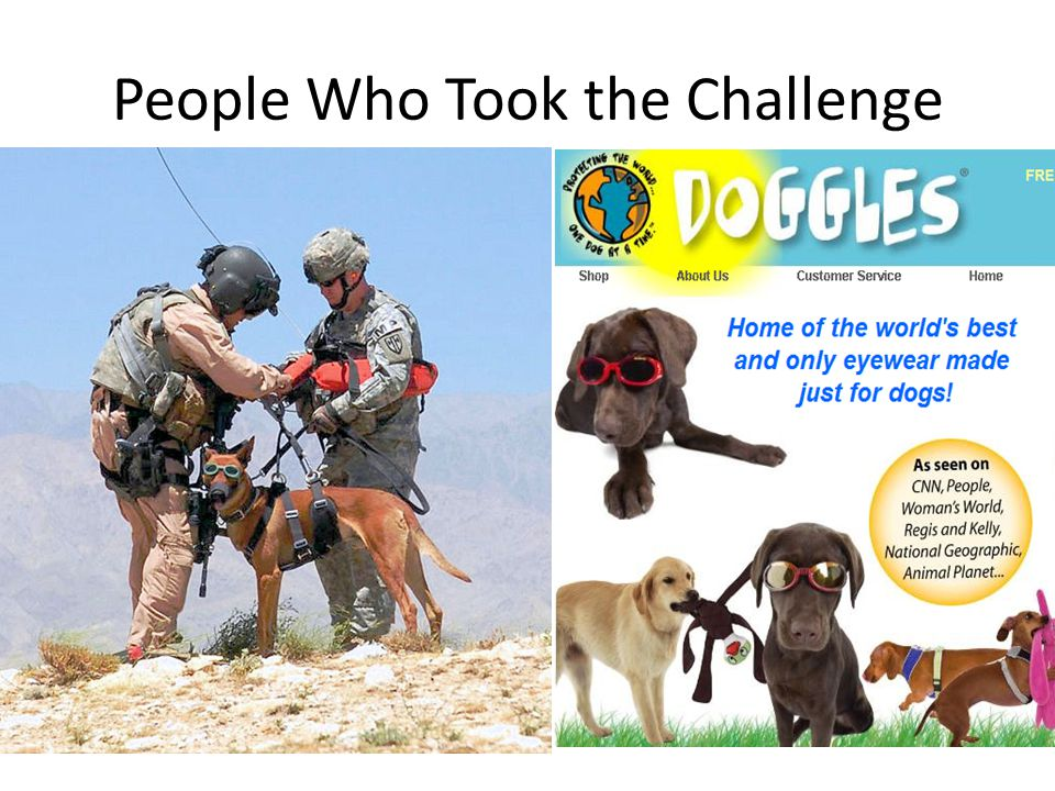 People Who Took the Challenge