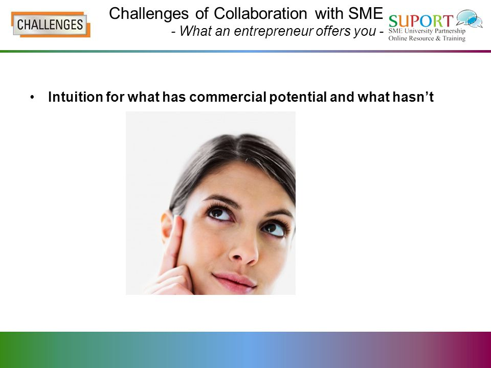 Intuition for what has commercial potential and what hasn't Challenges of Collaboration with SME - What an entrepreneur offers you -