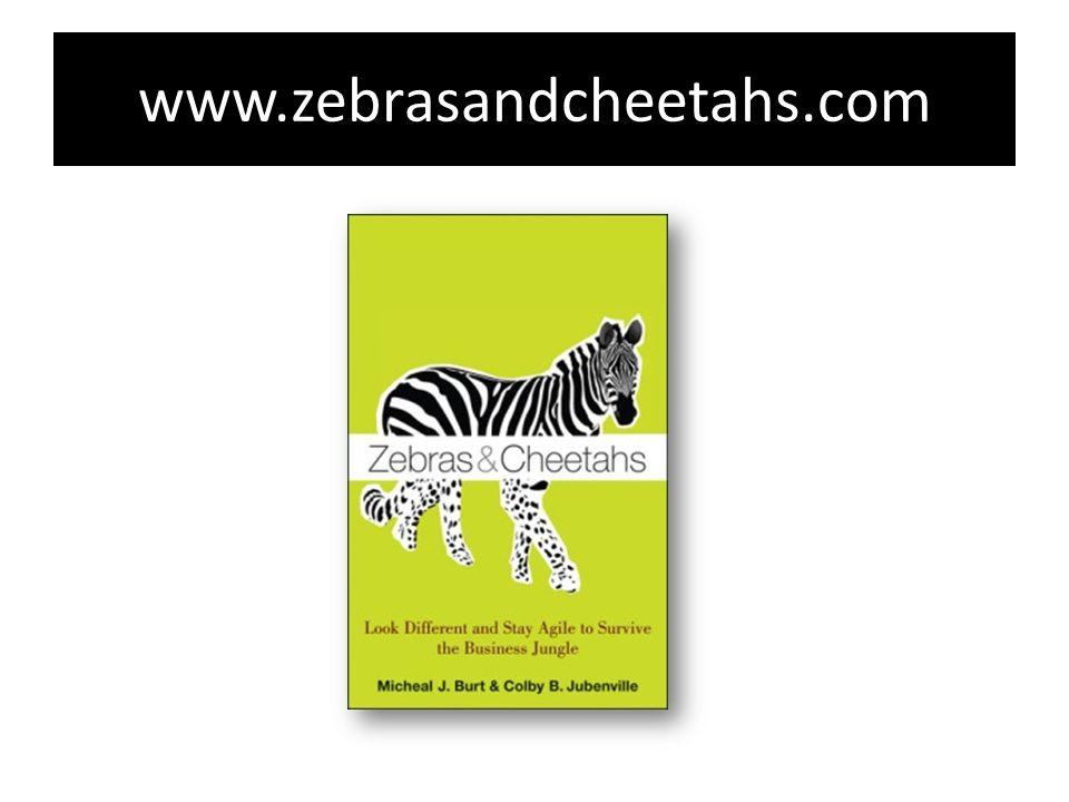 www.zebrasandcheetahs.com