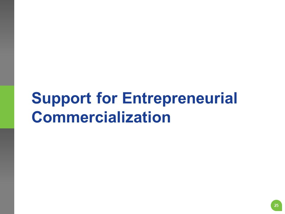 Support for Entrepreneurial Commercialization 25