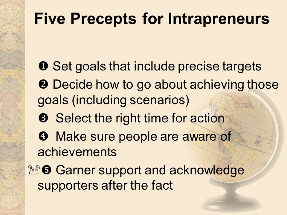 Five Precepts for Intrapreneurs  Set goals that include precise targets  Decide how to go about achieving those goals (including scenarios)  Select the right time for action  Make sure people are aware of achievements  Garner support and acknowledge supporters after the fact
