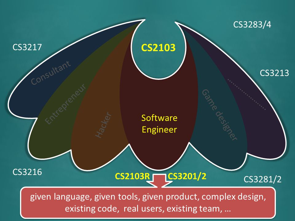 Software Engineer Entrepreneur Hacker Game designer …………………. Consultant CS2103