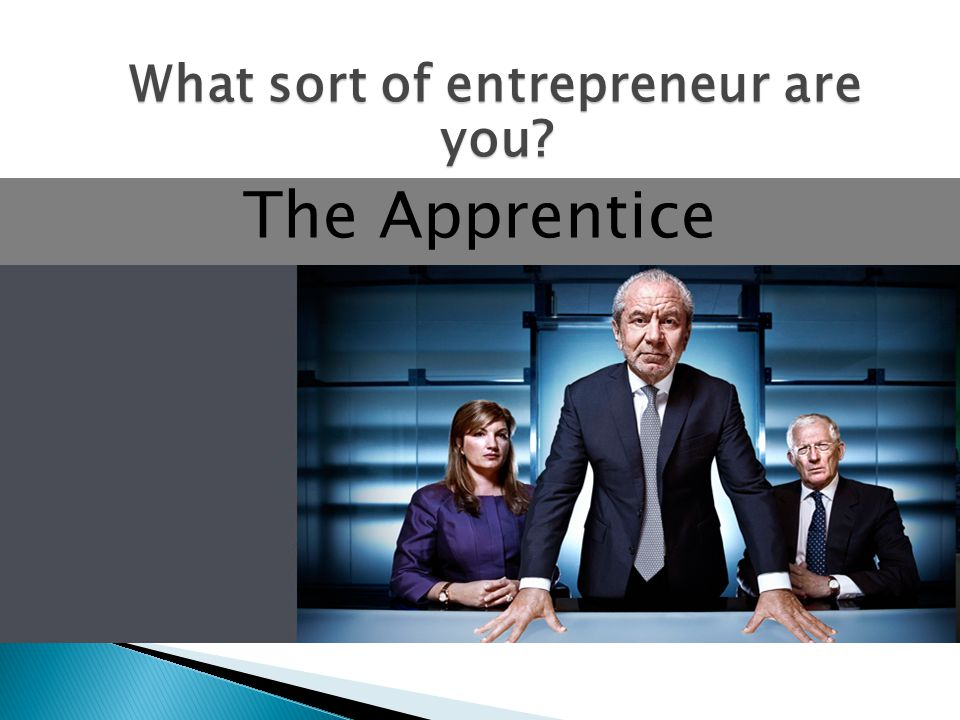 The Apprentice What sort of entrepreneur are you?