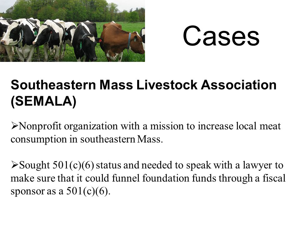 Cases  Nonprofit organization with a mission to increase local meat consumption in southeastern Mass.
