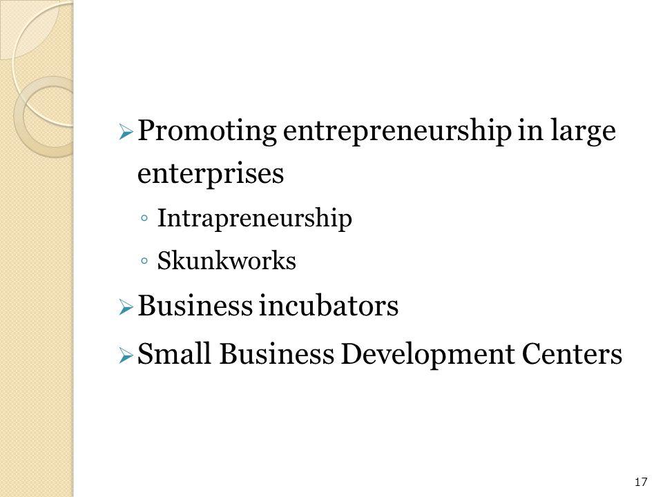  Promoting entrepreneurship in large enterprises ◦ Intrapreneurship ◦ Skunkworks  Business incubators  Small Business Development Centers 17