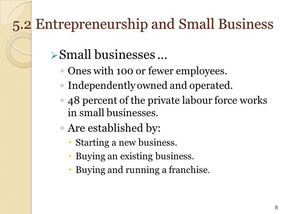  Internet Entrepreneurship ◦ The Internet offers numerous entrepreneurial opportunities.