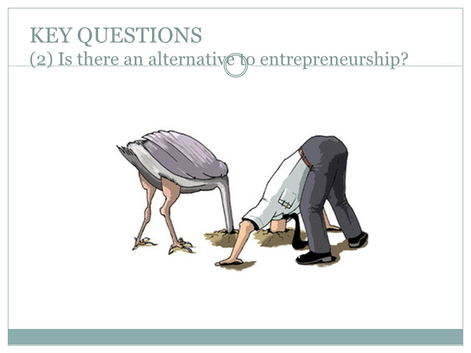 KEY QUESTIONS (2) Is there an alternative to entrepreneurship