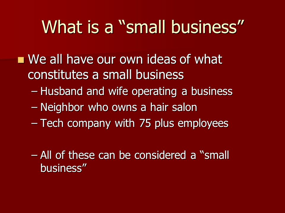 What is a small business We all have our own ideas of what constitutes a small business We all have our own ideas of what constitutes a small business –Husband and wife operating a business –Neighbor who owns a hair salon –Tech company with 75 plus employees –All of these can be considered a small business