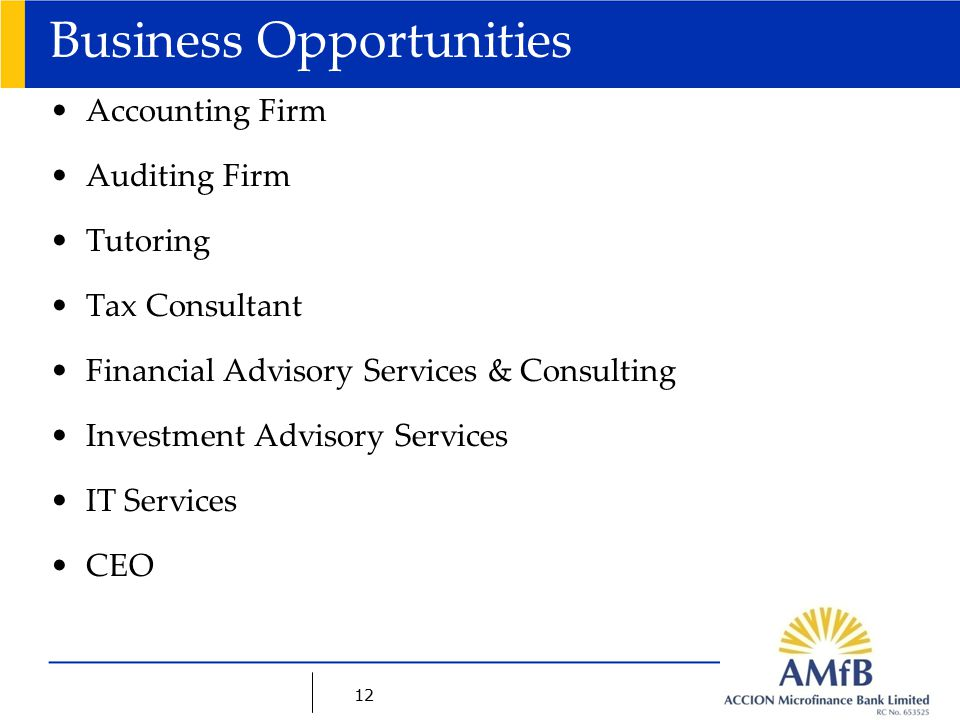 12 Business Opportunities Accounting Firm Auditing Firm Tutoring Tax Consultant Financial Advisory Services & Consulting Investment Advisory Services IT Services CEO