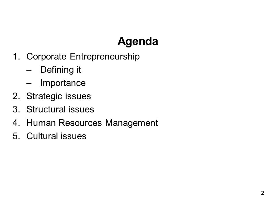 Agenda 1.Corporate Entrepreneurship –Defining it –Importance 2.Strategic issues 3.Structural issues 4.Human Resources Management 5.Cultural issues 2
