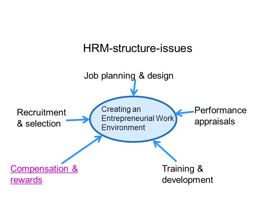 HRM-structure-issues Creating an Entrepreneurial Work Environment Job planning & design Recruitment & selection Compensation & rewards Training & development Performance appraisals
