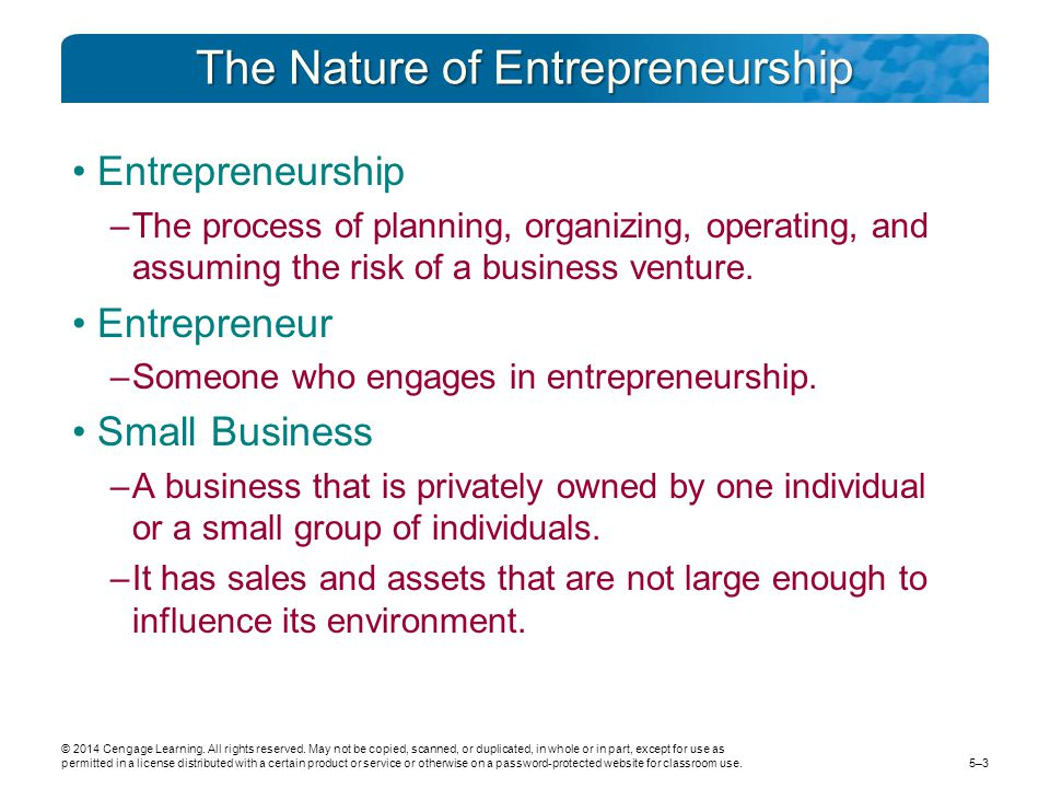 The Nature of Entrepreneurship Entrepreneurship –The process of planning, organizing, operating, and assuming the risk of a business venture. Entrepre