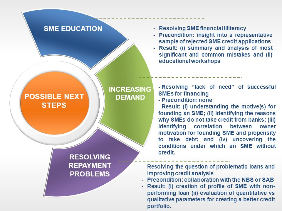 SME EDUCATION INCREASING DEMAND RESOLVING REPAYMENT PROBLEMS POSSIBLE NEXT STEPS -Resolving SME financial illiteracy -Precondition: insight into a rep