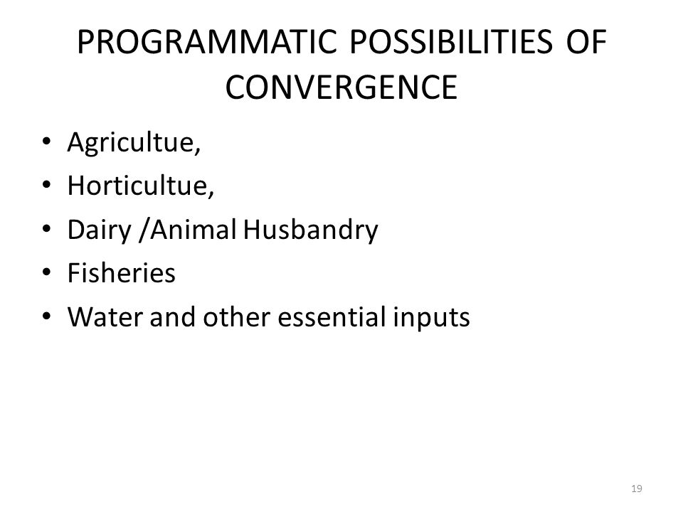 PROGRAMMATIC POSSIBILITIES OF CONVERGENCE Agricultue, Horticultue, Dairy /Animal Husbandry Fisheries Water and other essential inputs 19