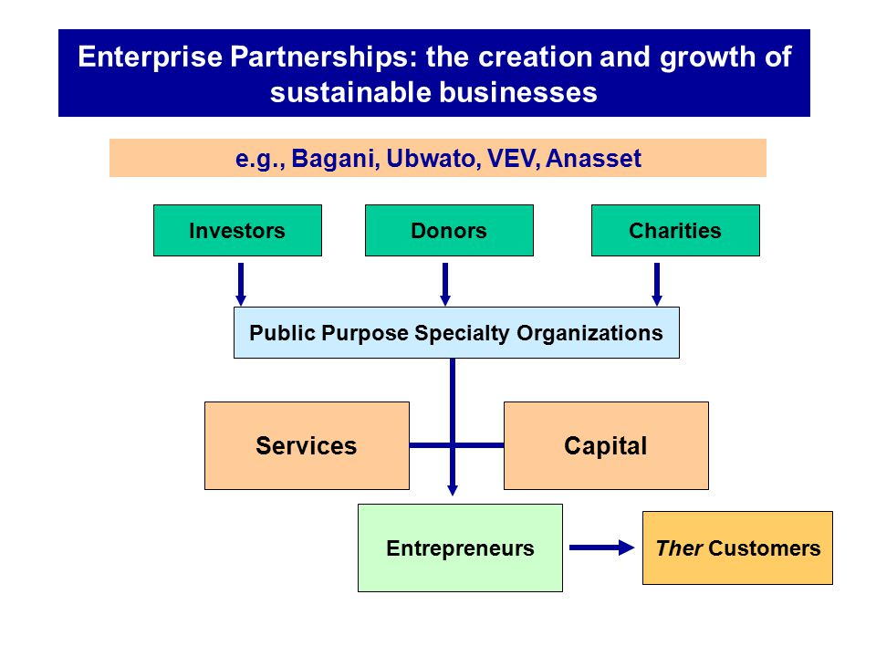 Enterprise Partnerships: the creation and growth of sustainable businesses InvestorsDonorsCharities Services Entrepreneurs Capital Ther Customers Publ