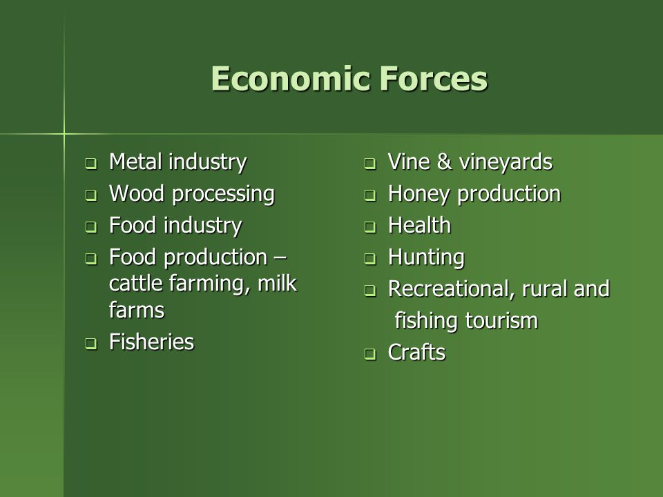 Economic Forces  Metal industry  Wood processing  Food industry  Food production – cattle farming, milk farms  Fisheries  Vine & vineyards  Honey production  Health  Hunting  Recreational, rural and fishing tourism fishing tourism  Crafts