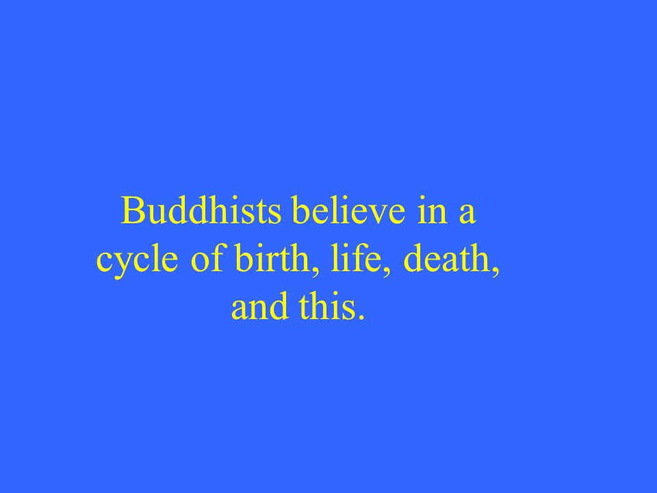 Buddhists believe in a cycle of birth, life, death, and this.