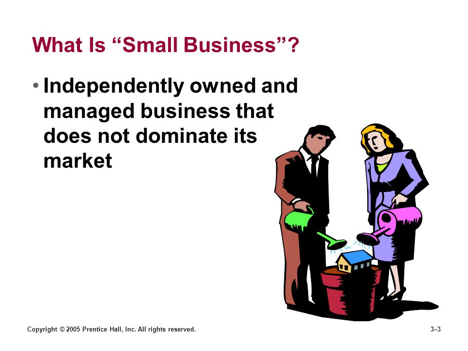 Copyright © 2005 Prentice Hall, Inc. All rights reserved.3–3 What Is Small Business .