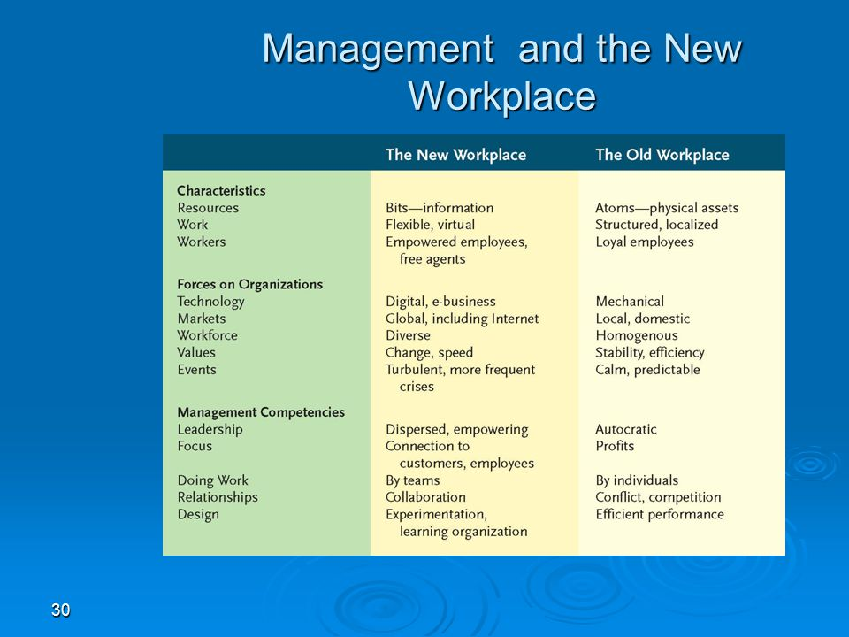 30 Management and the New Workplace