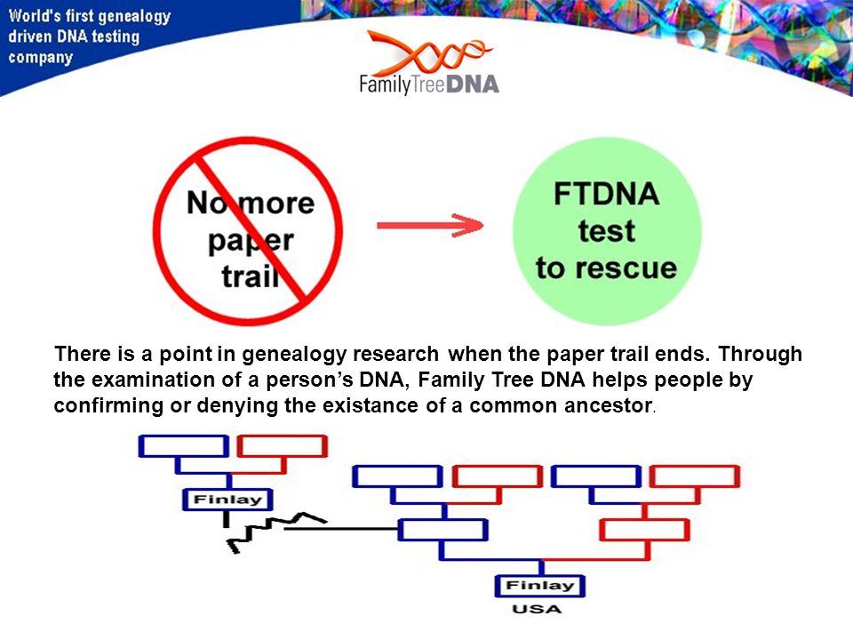 There is a point in genealogy research when the paper trail ends.