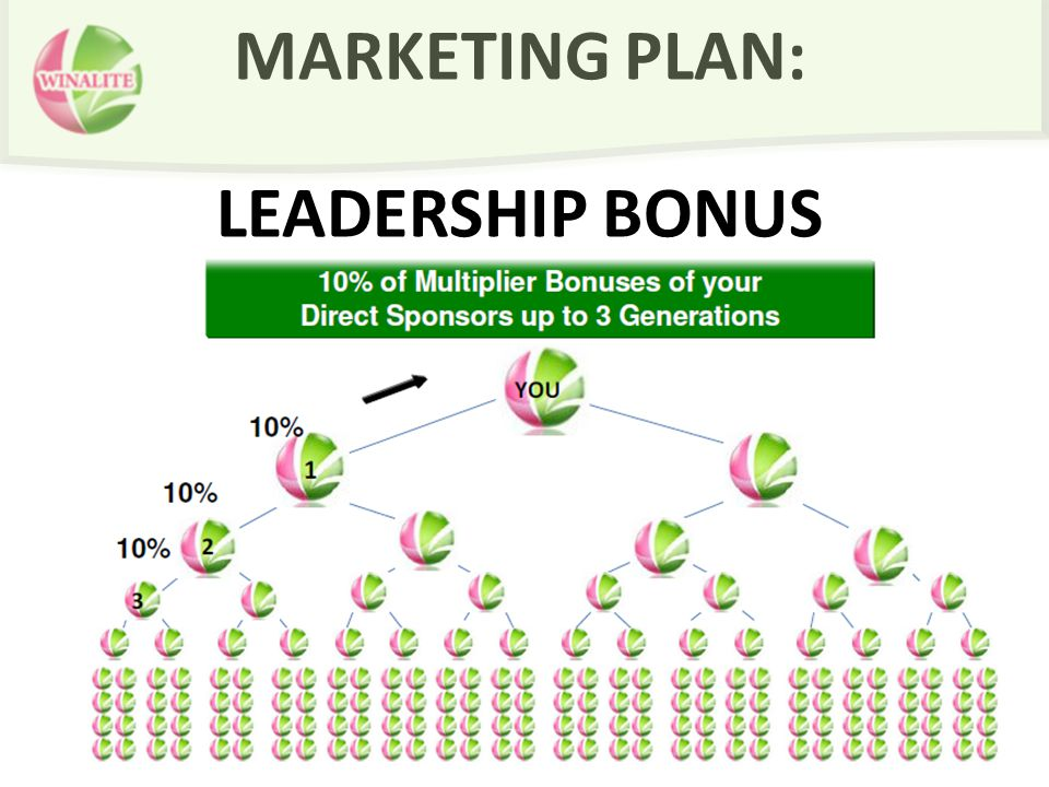 MARKETING PLAN: LEADERSHIP BONUS