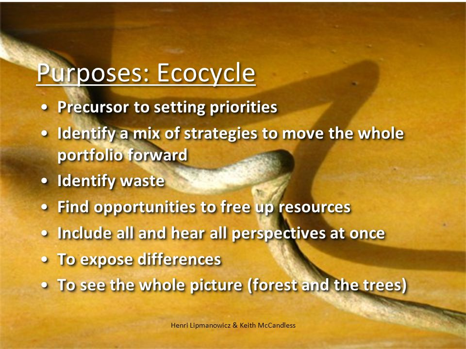Henri Lipmanowicz & Keith McCandless Purposes: Ecocycle Precursor to setting prioritiesPrecursor to setting priorities Identify a mix of strategies to