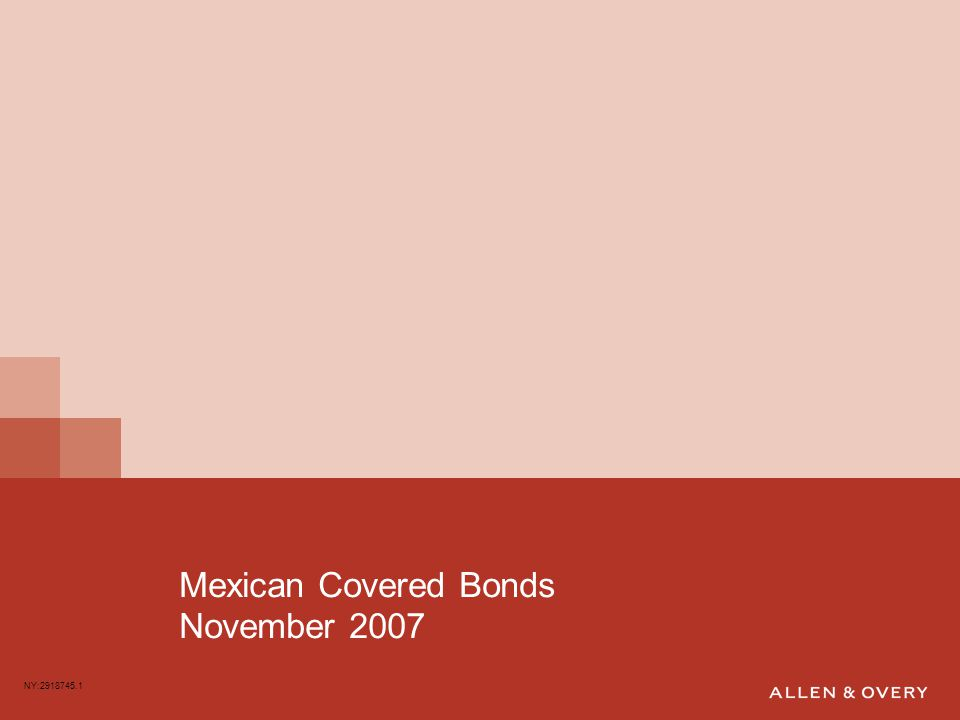 Mexican Covered Bonds November 2007 NY:2918745.1
