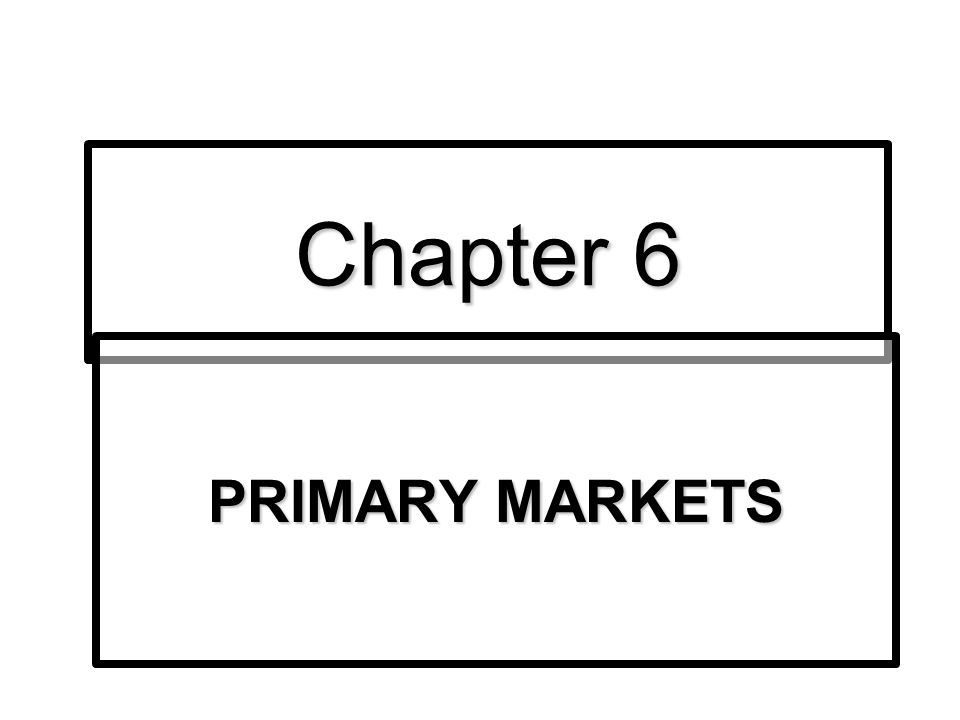 Chapter 6 PRIMARY MARKETS