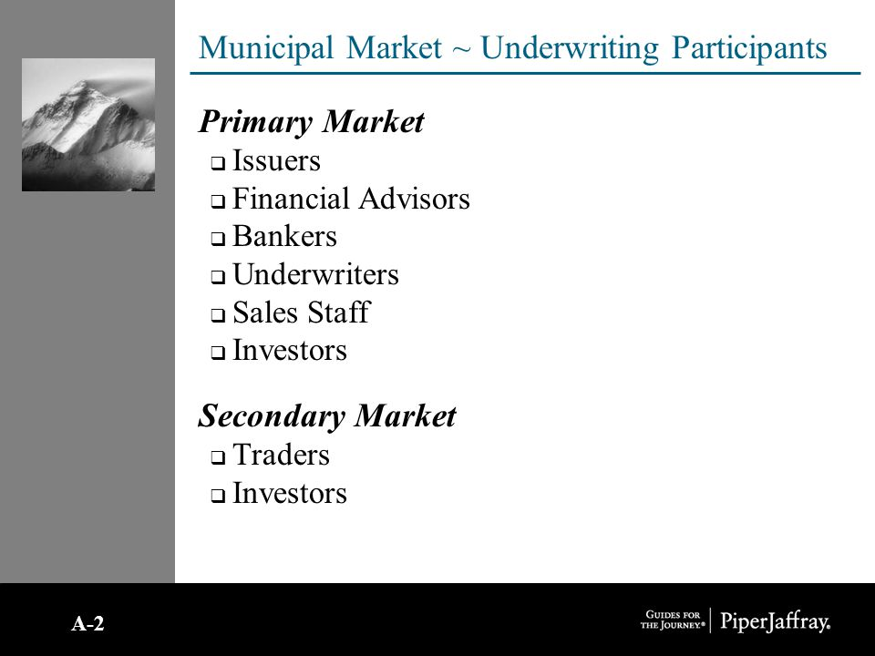 Municipal Market ~ Participants continued… Issuers  State & Local Governments  Special Purpose ~ Authorities, Districts, and Non-Profits Underwriters and Bankers  Senior Manager  May assist issuer and FA with financing plan.